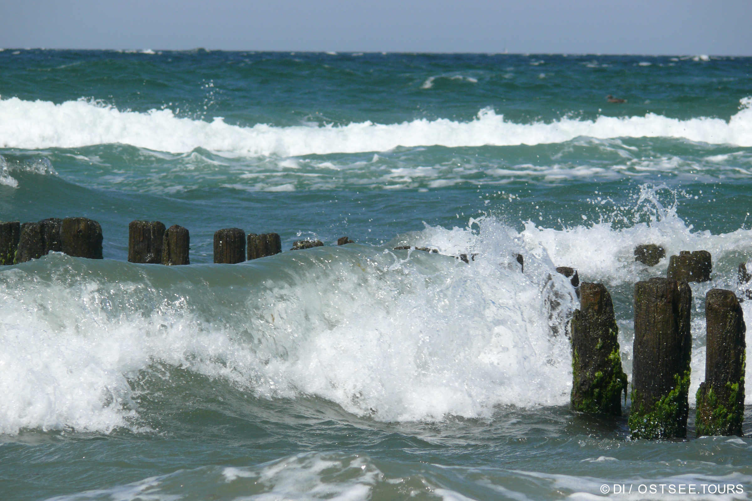 Ostsee, Welle und Buhnen