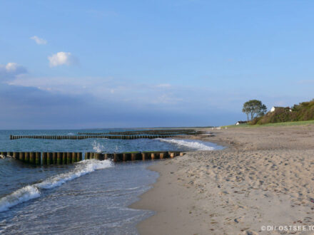 Ahrenshoop - Strand